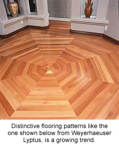 weyerlyptus_octagon_floor_caption